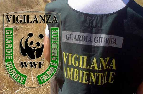WWF: LE GUARDIE ECO-ZOOFILE SI FANNO IN QUATTRO, MA LA PROVINCIA LE OSTACOLA