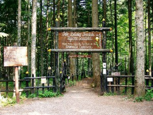 L'Orto Botanico di Abetone