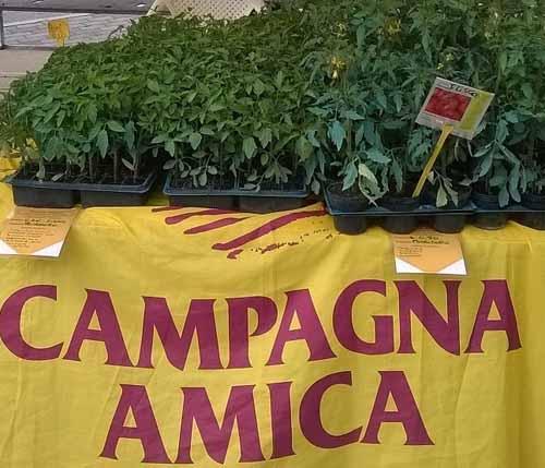 A CARNEVALE OGNI DOLCE VALE AL MERCATO CAMPAGNA AMICA