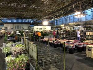 Il Mercato dei fiori all'interno