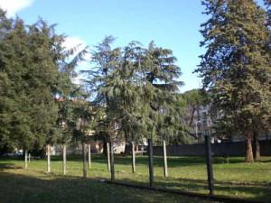 Il giardino di San Giovanni