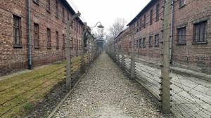 Auschwitz, interno del campo 2 - Auschwitz_01