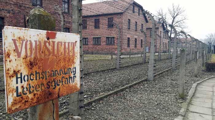 prigionia. UN UFFICIALE ITALIANO NEI CAMPI NAZISTI