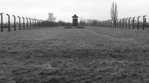 Birkenau, interno del campo