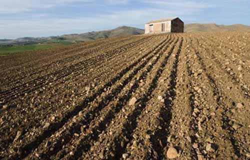 IMU AGRICOLA, FORZA ITALIA CONTRO LA LEGGE DI STABILITÀ