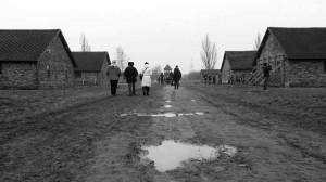 Il fango di Birkenau