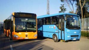 I bus Copit