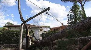 Linee elettriche interrotte dal maltempo