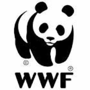 discarica del cassero. WWF A CISPEL: «INOPPORTUNA PRESSIONE SULLA REGIONE»