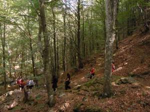 La riserva naturale Acquerino