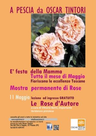 """""""ROSE D'AUTORE""""  NEL GIARDINO DEGLI AGRUMI"""