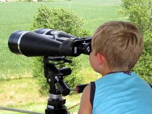 Birdwatching al Padule di Fucecchio