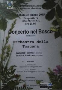 concerto-nel-bosco San Marcello