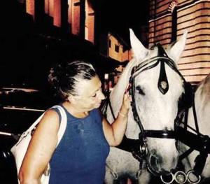 Cavalli in città