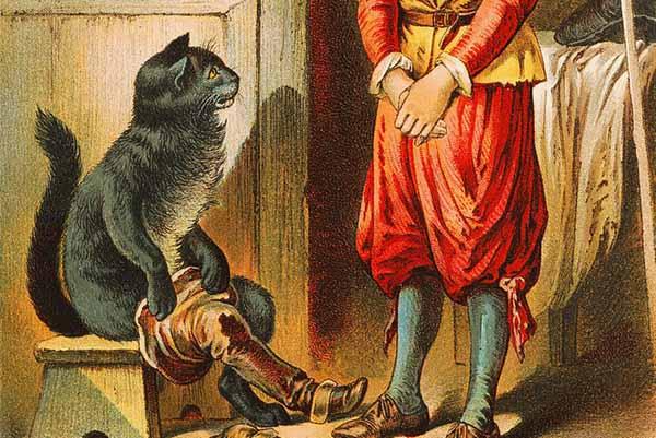 """festa del gatto. LA BIBLIOTECA SAN GIORGIO ORGANIZZA IL CONCORSO """"GATTI LETTORI"""""""