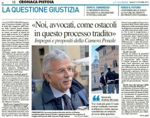 La Nazione, 3 ottobre 2015 - Avvocato Andrea Niccolai