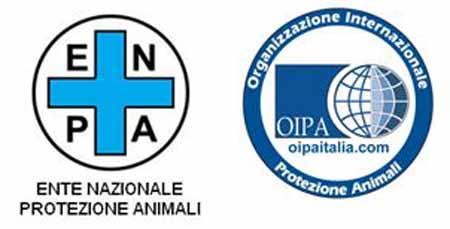 OIPA & ENPA: «NO ALLA GIOSTRA DELL'ORSO»