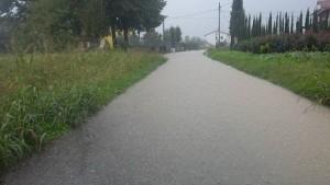 Via del Falchero