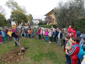 Festa dell'Albero 2015, giardino Via del Pelago