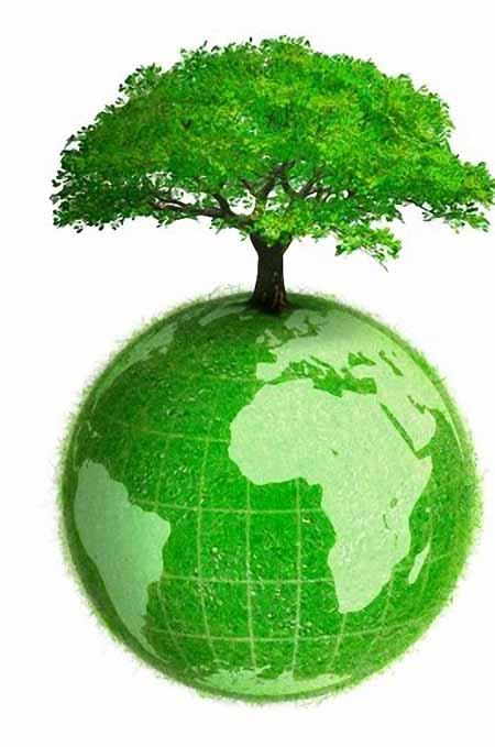 GREEN ECONOMY. SALVAGUARDIA DEI BENI COMUNI