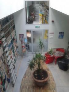 Montemurlo. Biblioteca in limonaia