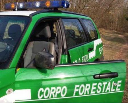 FORESTALI, POLIZIA DI STATO E POLIZIA PENITENZIARIA DAVANTI A MONTECITORIO