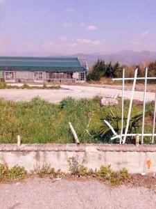 Pistoia. Via Toscana. 1