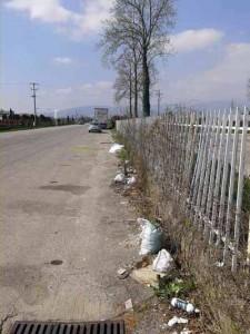 Pistoia. Via Toscana. 2