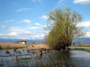 Area Le Morette (foto Enrico Zarri)