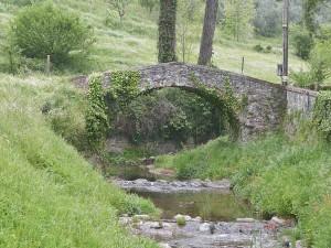 Il ponte medievale sul Cessana [Donatella Zaccagna]