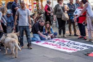 La manifestazione a Pisa