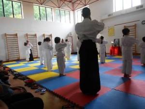 Una lezione di Aikido