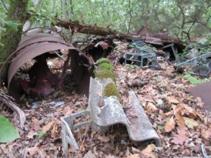 Amianto, plastica e ferro nell'Anpil Bosco della Magia
