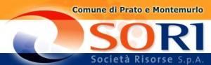 Il logo di So.Ri Spa