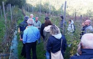 Cireglio, la lezione sui frutti di bosco