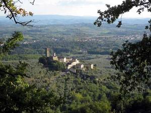 Il Castello di Larciano [Enrico Zarri]