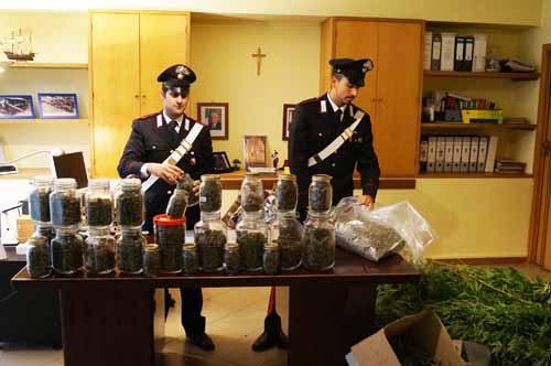 carabinieri. COLTIVAVA CANNABIS A LIVELLO INDUSTRIALE, ARRESTATO