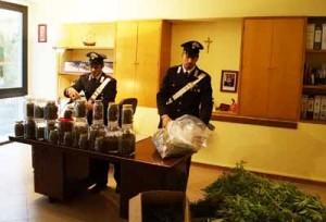 Parte della droga sequestrata. 2