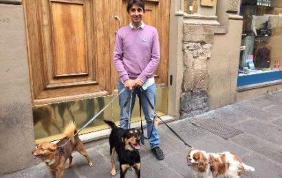 """cani. DONZELLI (FDI): """"NUOVE NORME ANTI-ABBANDONO: SANZIONI PER I SENZA MICROCHIP"""""""