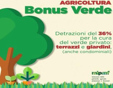 bonus verde. LA GRANDE SODDISFAZIONE DELL'ONOREVOLE BINI