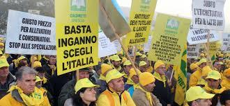 FILIERA ITALIA: TRA I FONDATORI C'È GIORGIO TESI GROUP