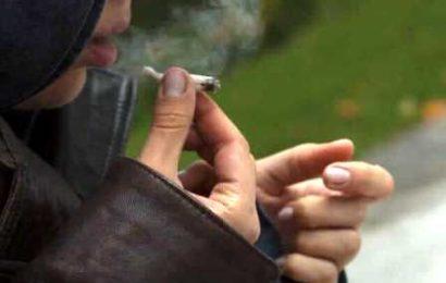 liberalizzazione della cannabis. IL CHIODO FISSO DELLE SINISTRE