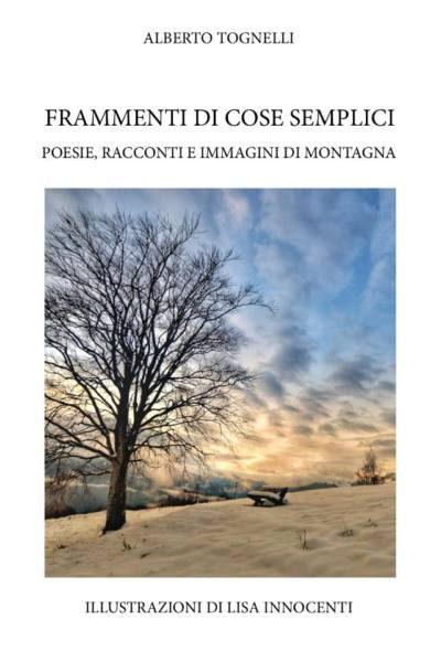 libri & letture. «FRAMMENTI DI COSE SEMPLICI» DI ALBERTO TOGNELLI