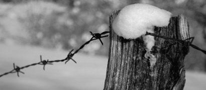 quarrata. GIORNO DELLA MEMORIA: LE INIZIATIVE DEL COMUNE