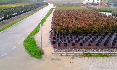 inquinamento da pesticidi. A PISTOIA LIVELLI SENZA PRECEDENTI