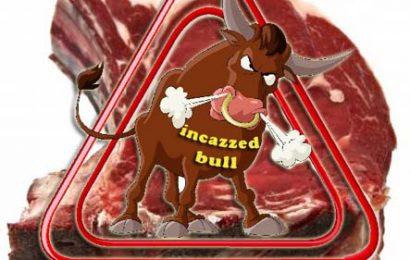 "agliana's bulls. BILLY THE KID ""QUAL VOLLE SI RITROVI"""