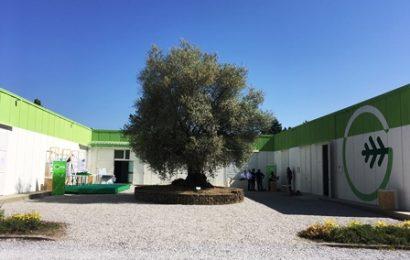GEA, UN NUOVO CENTRO DI RICERCA E SOSTENIBILITÀ AMBIENTALE