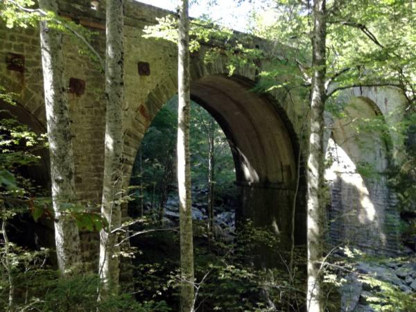 ponte dei mandrini. LE FOTO