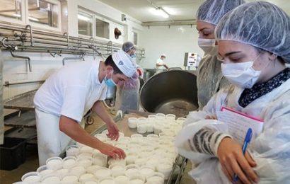 GASTRONOMO E FARMER 4.0: DUE CORSI PER INTRODURRE I GIOVANI ALL'AGRIBUSINESS