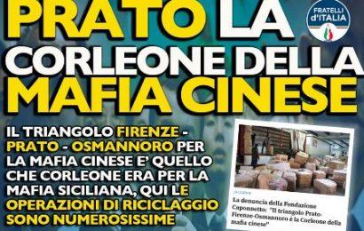 """""""SERVONO AZIONI PIÙ INCISIVE CONTRO IL FENOMENO DELLA MAFIA CINESE"""""""